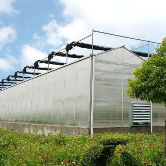 China Factory Agriculture PC Sheet Greenhouse with Hydroponic System