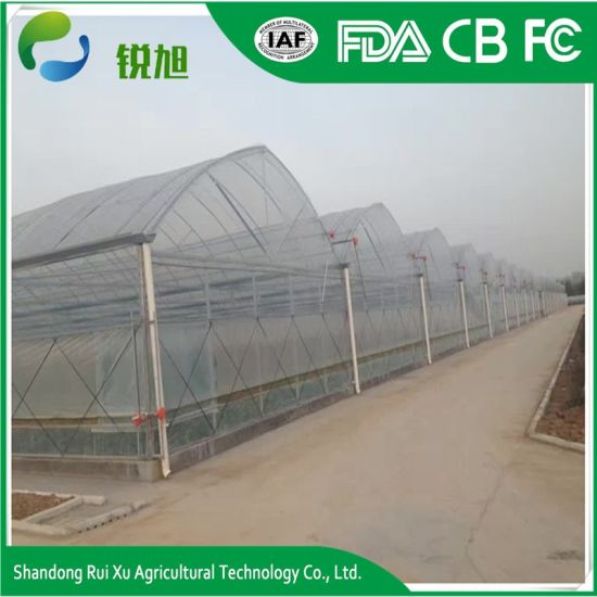 Multi Span Agricultural Film Greenhouse for Farming pictures & photos