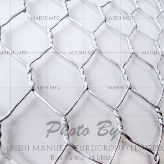 China Hexagonal Poultry Wire Mesh Netting - China Hexagonal Poultry ...
