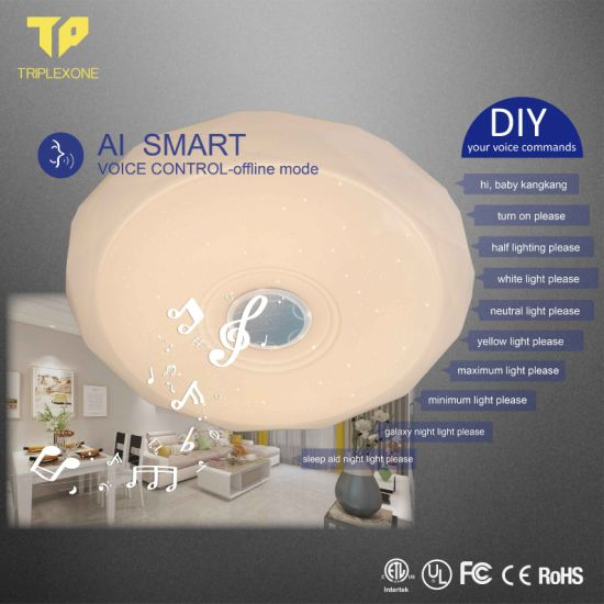 Dimmable LED Light 36W 300mm Voice Smart/Remote Control Lamparas De Techo Surface Mounted Ceiling Lamp