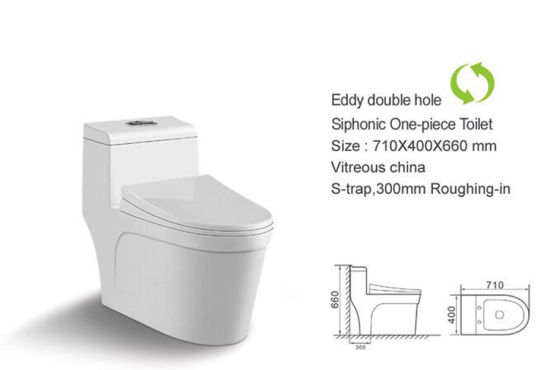 One Piece Toilet Eddy Double Hole Siphonic Toilet
