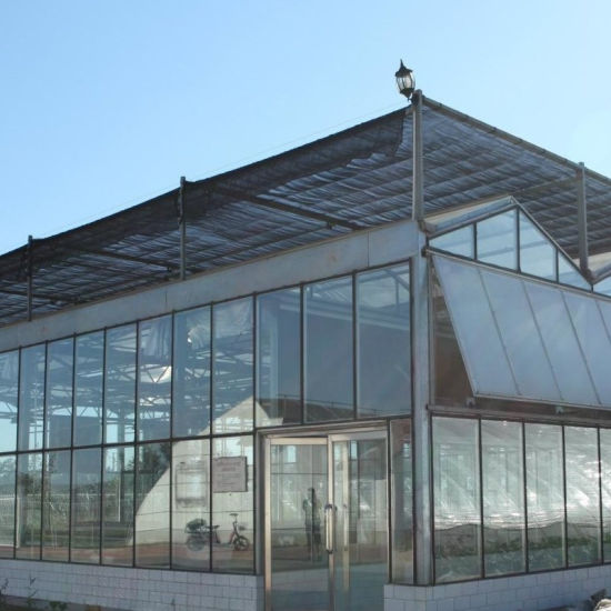 The Agricultural Glass Greenhouse with Hydroponic System