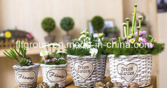 Pastoral Eco-Friendly Vintage Decorative Round Willow Flower Pot