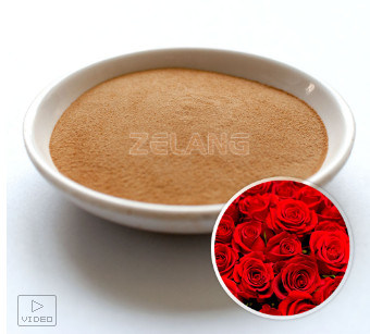 Manufacturer of Rose Concentrate Extract