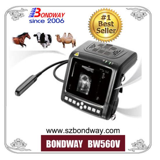 Bovine Ultrasonic Scanner Pregnancy Test Equipment, Veterinary Ultrasound Equipment, Reproduction Ultrasound Scan, Vet Color Doppler Ultrasound