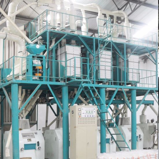 50tpd Maize Flour Mill Machinery Popular Capacity in Kenya Zambia Malawi pictures & photos