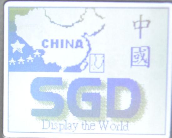 SGD-LCM-GY1612A3FSA6T01-LCD DISPLAY