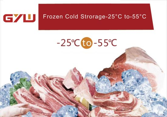 Cold Room/Freezer/Blast Freezer/ pictures & photos