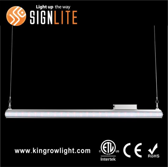 Double Side Liner LED Grow Light 100-300 Watts