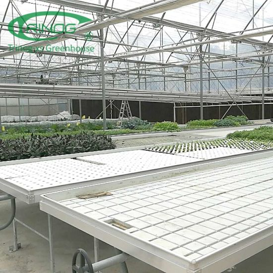 Micro green hydroponics growing system for farm