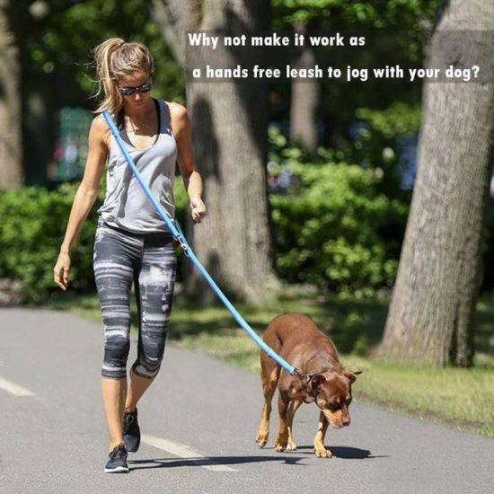 Adjustable Hands Free Leash Dog Pet Lead Waist Belt for Jogging Walking Running Black B0723cfqcq All Seasons