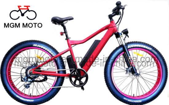 500W 750W Hidden Battery Fat Tire 26inch Mountain Electric Bike pictures & photos