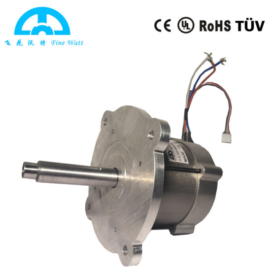 Electric Electrical Brushless DC Lawn Mower Motor with 2800rpm 1600W 32VDC