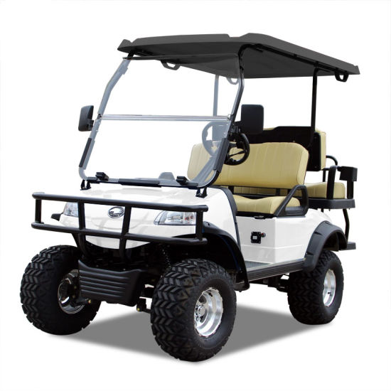 Electric Buggy Golf Cart Hunting Car (DEL2022D2Z, white) Blackroof
