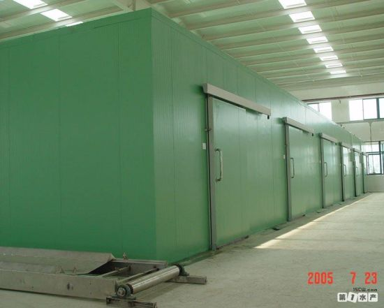 Walk in Meat and Fish Processing Cold Storage 20 Ton