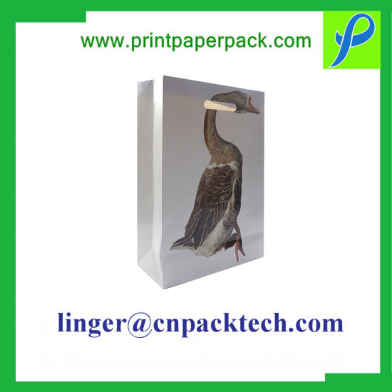 Customized Paper Handle Gift Bag for promotion & Display Gift Container