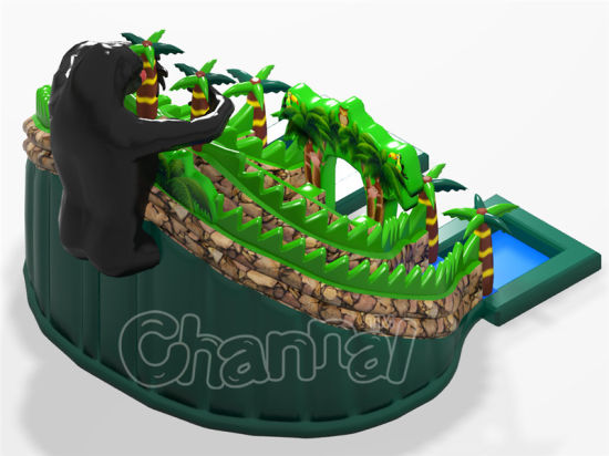 Original Design Orangutan Inflatable Water Slide with Small Pool pictures & photos
