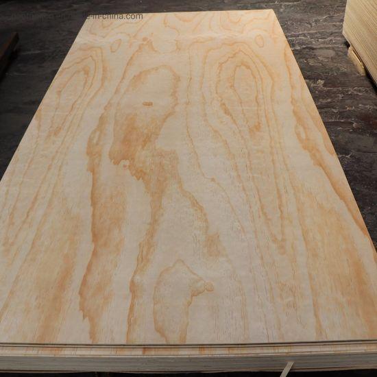 China 4mm 9mm 12mm 18mm Thick Poplar Core Pine Plywood Sheet