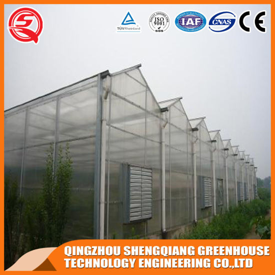 Commercial Steel Frame PC Sheet Agriculture Productive Garden Grow Tent/Greenhouse