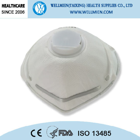 Filtered N95 Non-Woven Dust Masks pictures & photos
