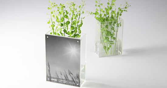 China Clear Functional Acrylic Flower Vase Picture Frame China