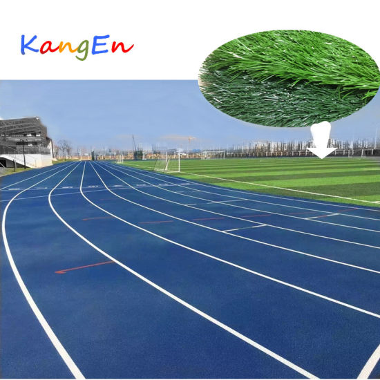 Synthetic Grass for International Football Field pictures & photos