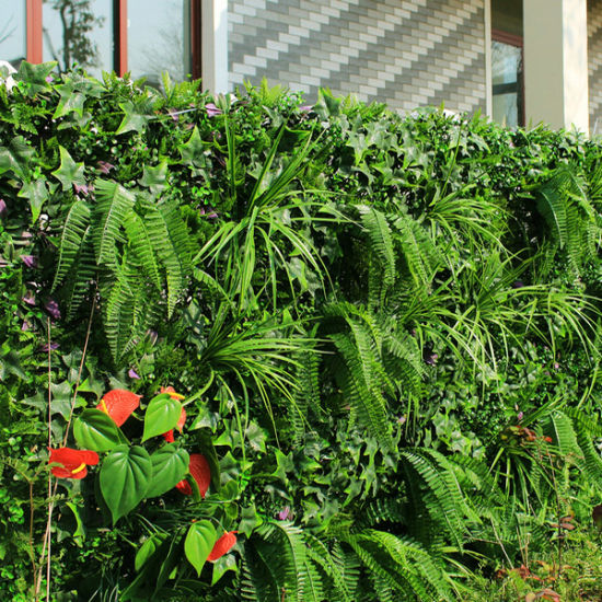 China Fake Garden Hedges Plastic Leaves Wall Plants China