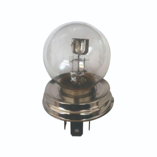 Wholesale G40 Hard Glass 6000K Halogen LED Bulb