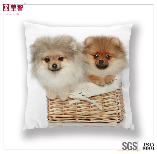 40cm Printed Decoration Cushion Cover pictures & photos