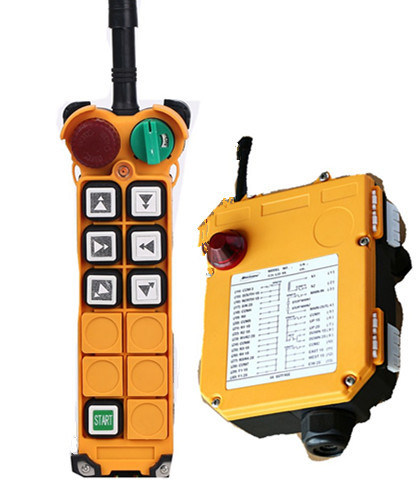 Crane Radio Remote Control 110V F24-6D pictures & photos