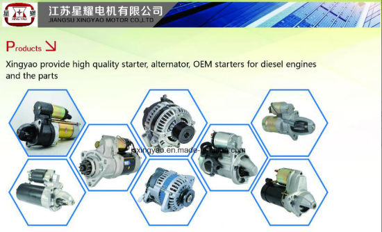 China Denso Diesel Engine Starter Motor for Daihatsu Rocky2 8 Diesel