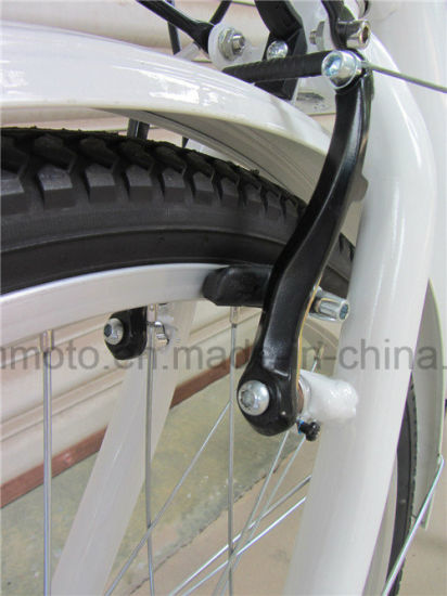 Lithium Battery Hot Sale 24 Inch Tire Electric Tricycle pictures & photos