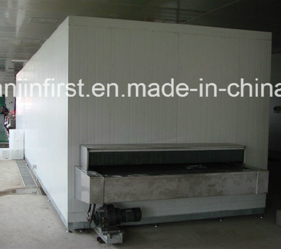 Quick Freezing Machine/ IQF Tunnel Freezer for Made in China pictures & photos