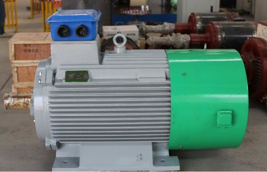 Customize Generator Alternator for Diesel Gas Biogas Thermal Steam Turbine  Engine and CHP System
