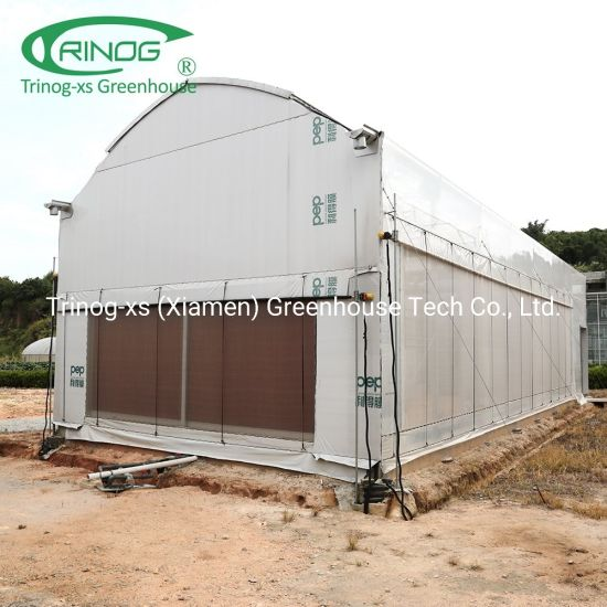 Commercial used indoor LED light deprivation plant green house for sale