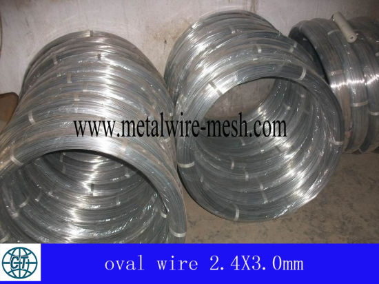 Oval Galvanize Wire (high carbon wire and low carbon wire)