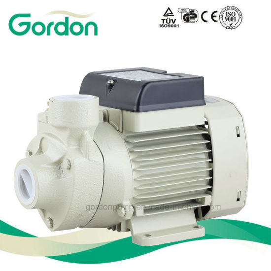 Domestic Electric Copper Wire Peripheral Water Pump with Electric Cable pictures & photos