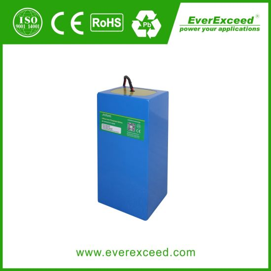 Everexceed Storage Battery 24V30ah / 50ah / 60ah /72ah /90ah /100ah Cylindrical Rechargeable LiFePO4 Lithium Iron Battery Pack for Solar Street Light System