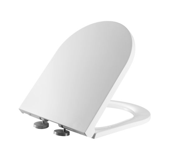 Incredible European Market Soft Closing Oval Indian Toilet Seat Covers Gmtry Best Dining Table And Chair Ideas Images Gmtryco