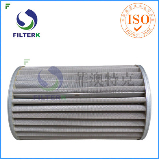 Replacement Natural Gas Filter Element pictures & photos