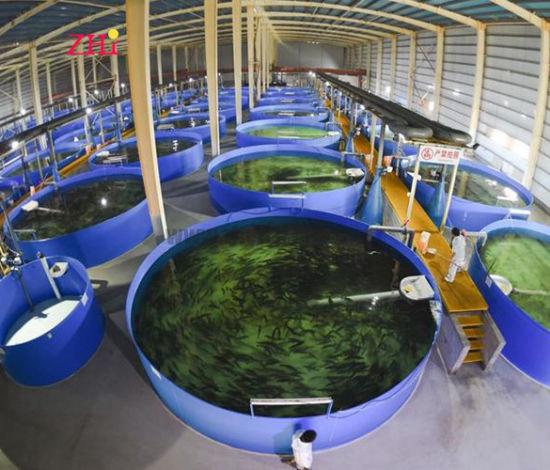 China Custom Made Fish Farming Pond Design China Fish Farm Pond Large Fish Tanks
