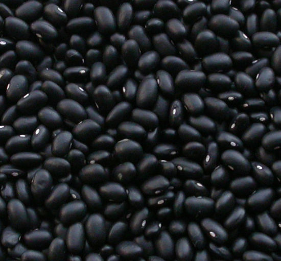New Crop for Exporting Black Kidney Beans