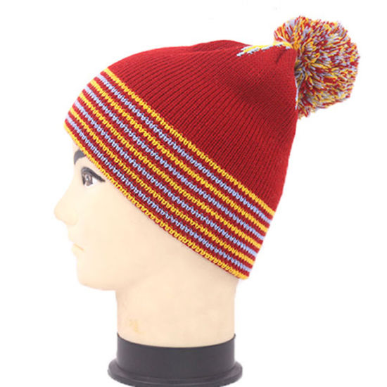 Winter Ladies Pompom Knitted Beanie Hat pictures & photos