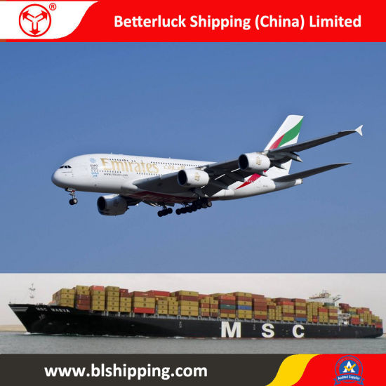 Dropshiping From China to New Zealand Napier Hastings Shipping Freight pictures & photos