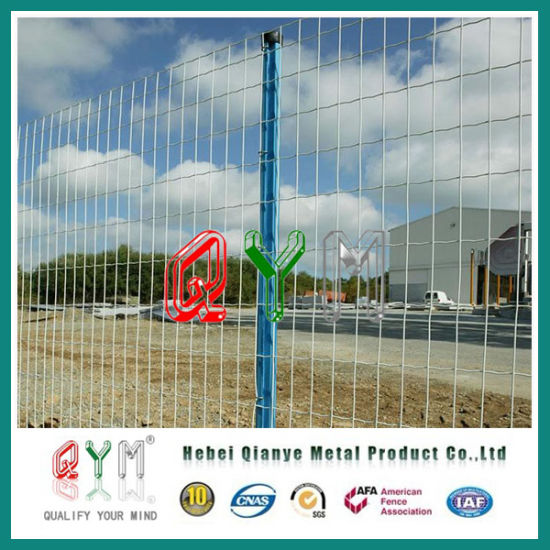 China 48H X 48W Black Welded Wire Mesh Euro Steel Fence Gate