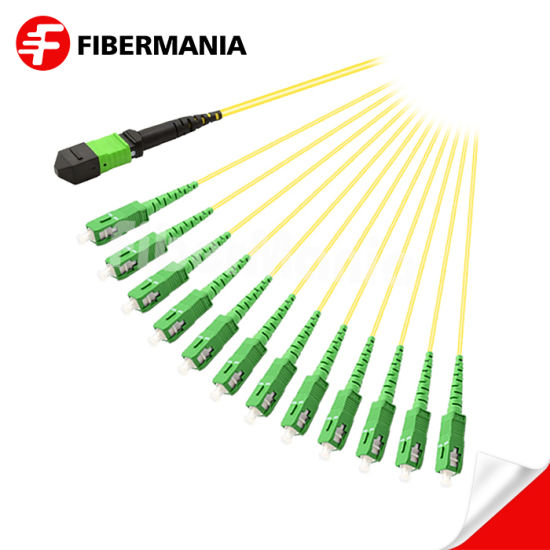Factory Best Price MPO to SC/APC Fanout Cable SM Fiber Optical Jumper FTTH Cable