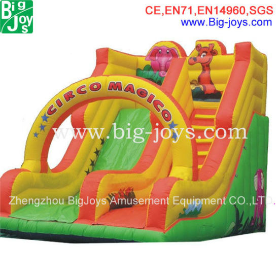 Promotion Giant Colorful Custom Inflatable Slide (007) pictures & photos