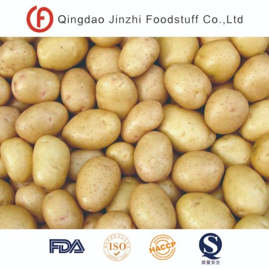 Good Quality Factory Supply Exporting Fresh Potatoes pictures & photos