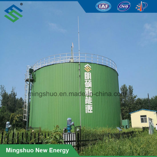 China 3000m3 Uasb Biogas Plant Tank Reactor for Industrial