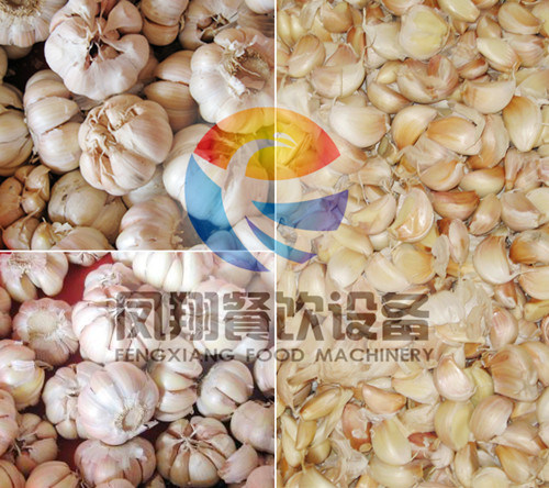 Garlic Separator Machine Garlic Breaker Garlic Bulk Split Machine pictures & photos